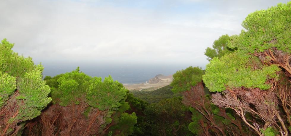 vista verde azores_Azoren_Faial_Capelinhos