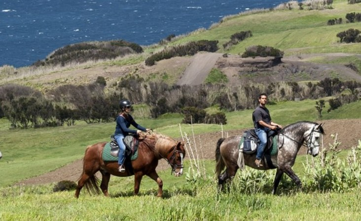 Riding Holidays Whales & Volcanoes