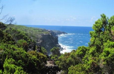 Pico_Küstenlandschaft