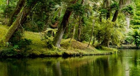 Azoren_Naturparadies