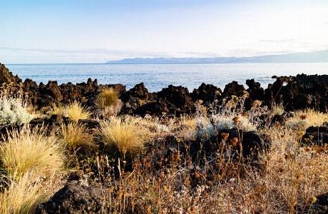 Azoren_Ilha Negra_Pico