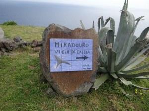 Santa Maria_viewpoint_vista verde azores