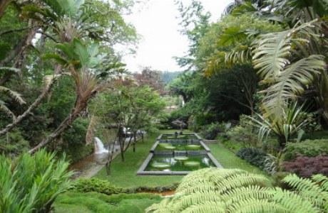 Sao Miguel_Terra Nostra Park