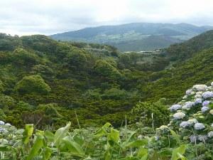 Azoren_Landschaft_Faial